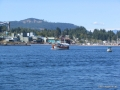 519-Alaskan.JPG