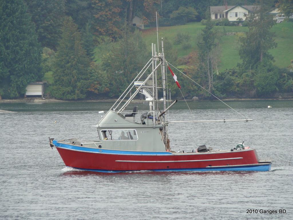 DSC07997 Flying Fisher