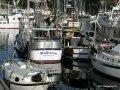 Ganges2011 019